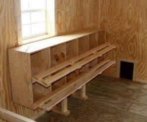 Быстрые и простые варианты сооружения гнезд для кур несушек своими руками