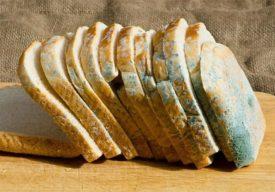 Какой хлеб под запретом