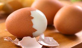 Пищевая ценность куриного яйца