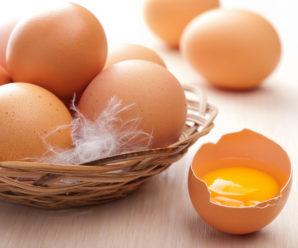 Куриное яйцо: все о составе ценного и полезного продукта