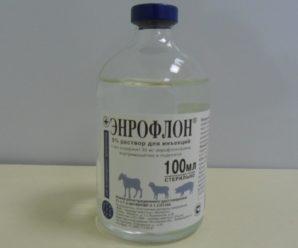 Энрофлон – инструкция к антибиотику для всех птиц и птенцов от всех инфекций