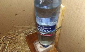 Поилка для цыплят из пластиковой бутылки