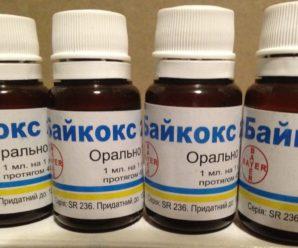 Эффективное лечение кокцидиоза: использование Байкокса для птиц по инструкции
