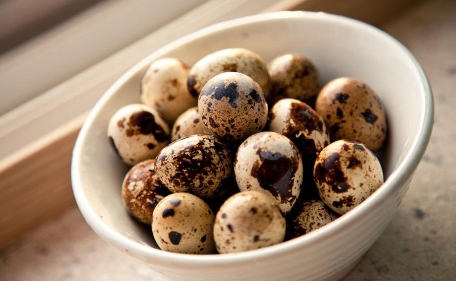 Перепелиные яйца польза для мужчин
