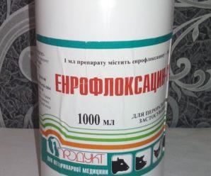 Энрофлоксацин: инструкция к антибактериальному препарату широкого спектра действия для птицы