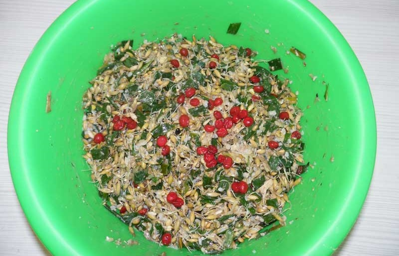 Рецепты домашних кормов