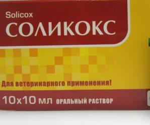 Препарат Соликокс – средство от инфекций кроликов
