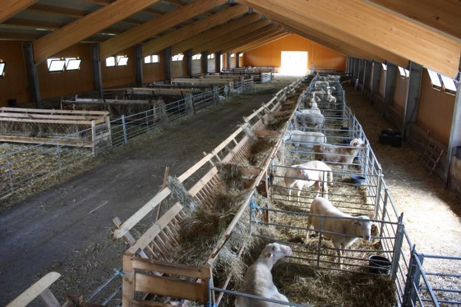 Широкие ворота в овчарне