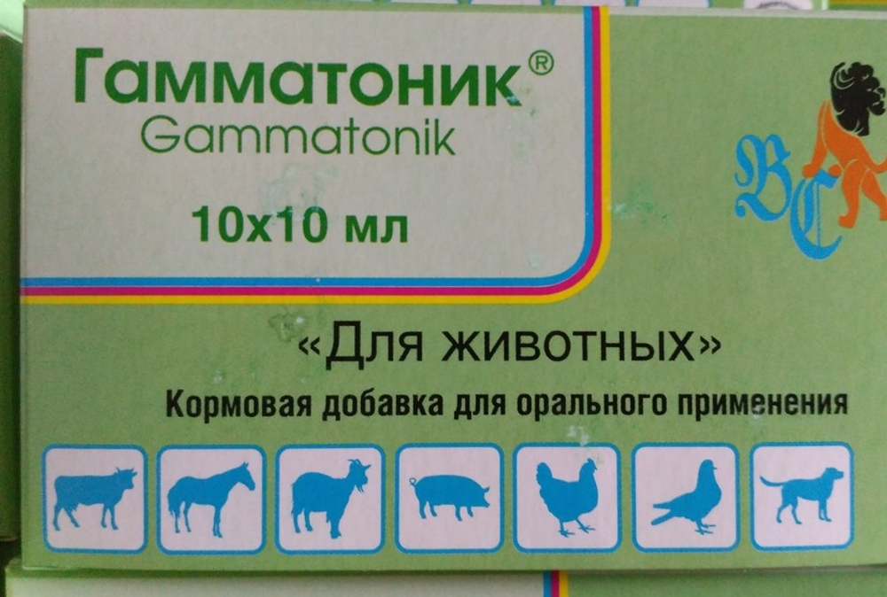 Гамматоник для птицы
