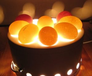 Тонкости овоскопирования куриных яиц: особенности и правила процедуры