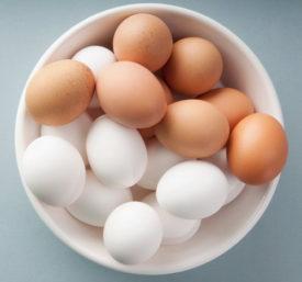 Качественные инкубационные яйца
