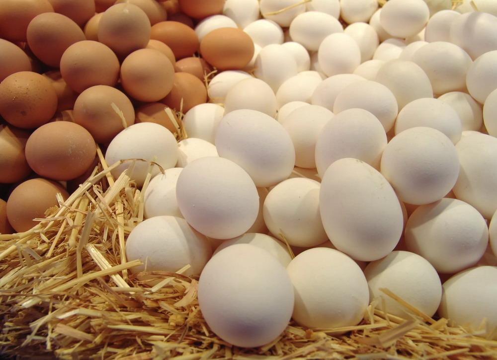 Свежие сырые яйца
