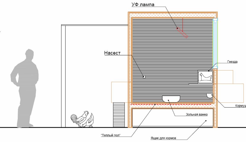 Схема курятника Додонова