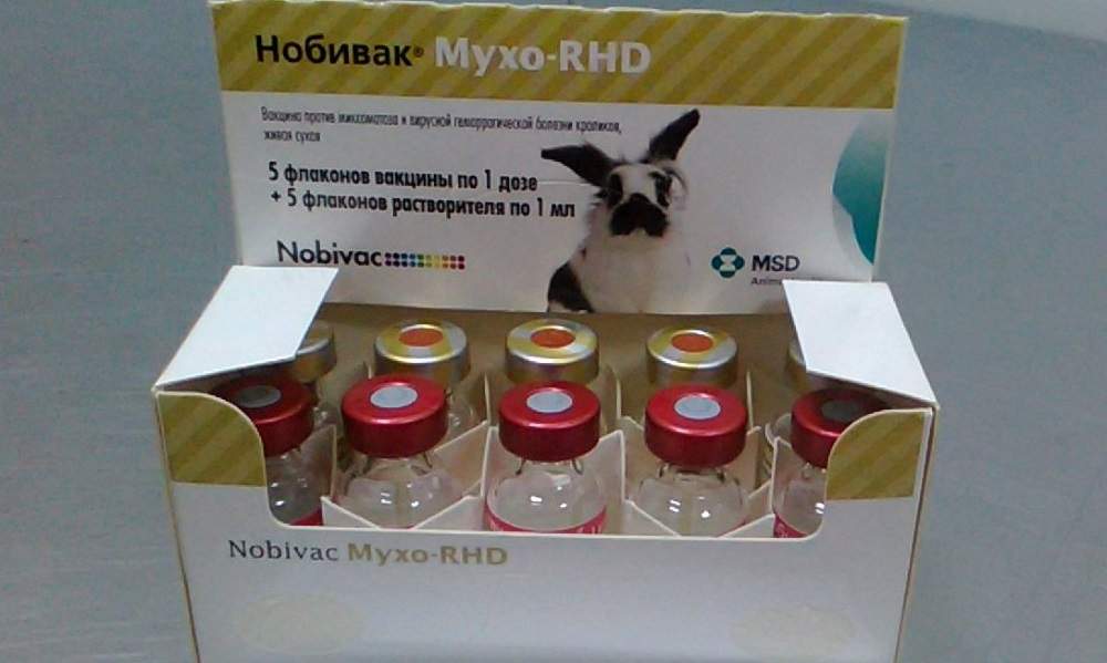 Вакцина от миксоматоза