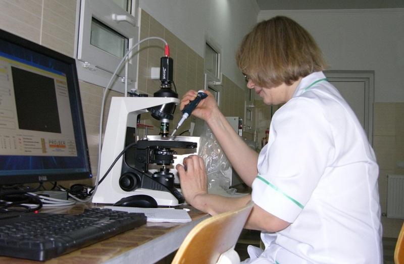Изучение качества спермы хряков