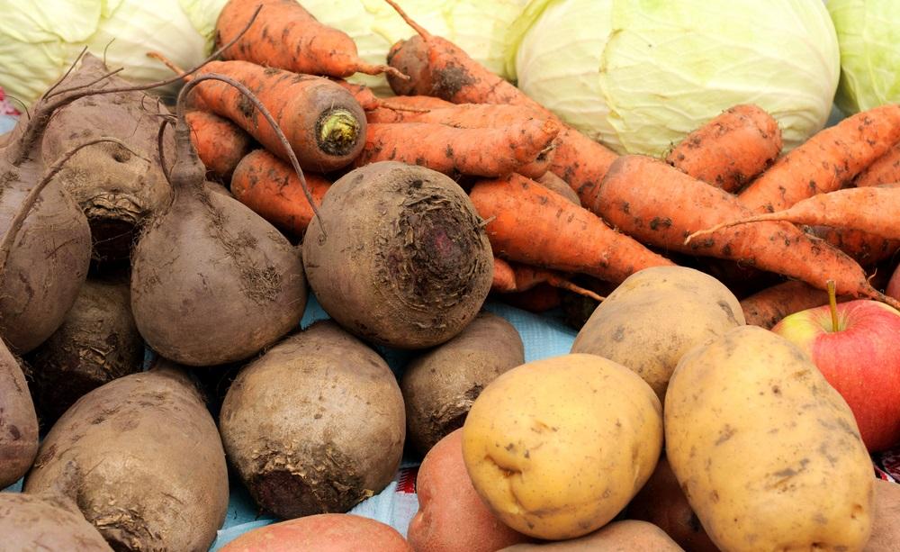 Картофель и морковь для цыплят