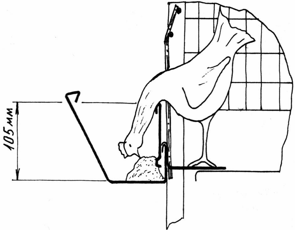 Клетка для кур своими руками чертежи