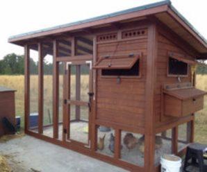Курятник Додонова: строительство комфортного жилья для кур своими руками