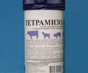 Тетрамизол 10: инструкция по применению для птиц
