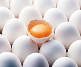 Половина яйца
