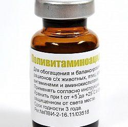 Поливитаминоацидос для птиц: фармакологическое действие и правила применения