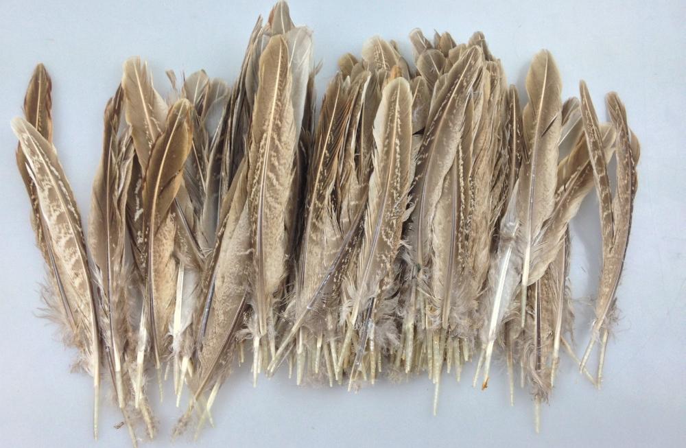Перья утки