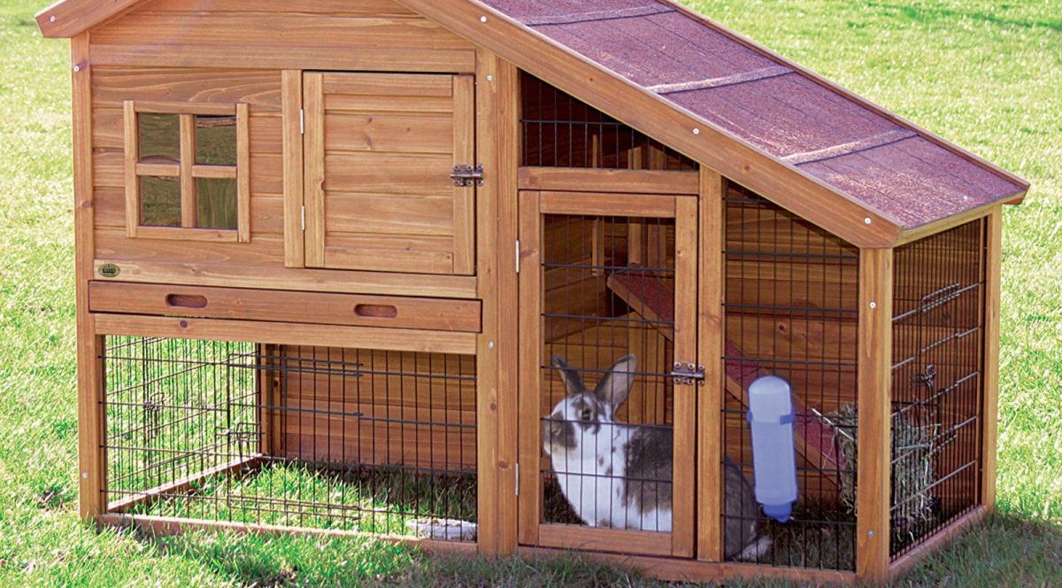 Вольеры для кроликов дома своими руками 21