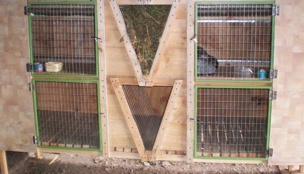 Клетки Золотухина для кроликов своими руками: чертежи, размеры и пошаговая инструкция с фото и видео