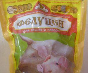 Фелуцен для свиней – витаминная и минеральная польза в одном продукте