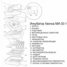 Схема инкубатора Квочка