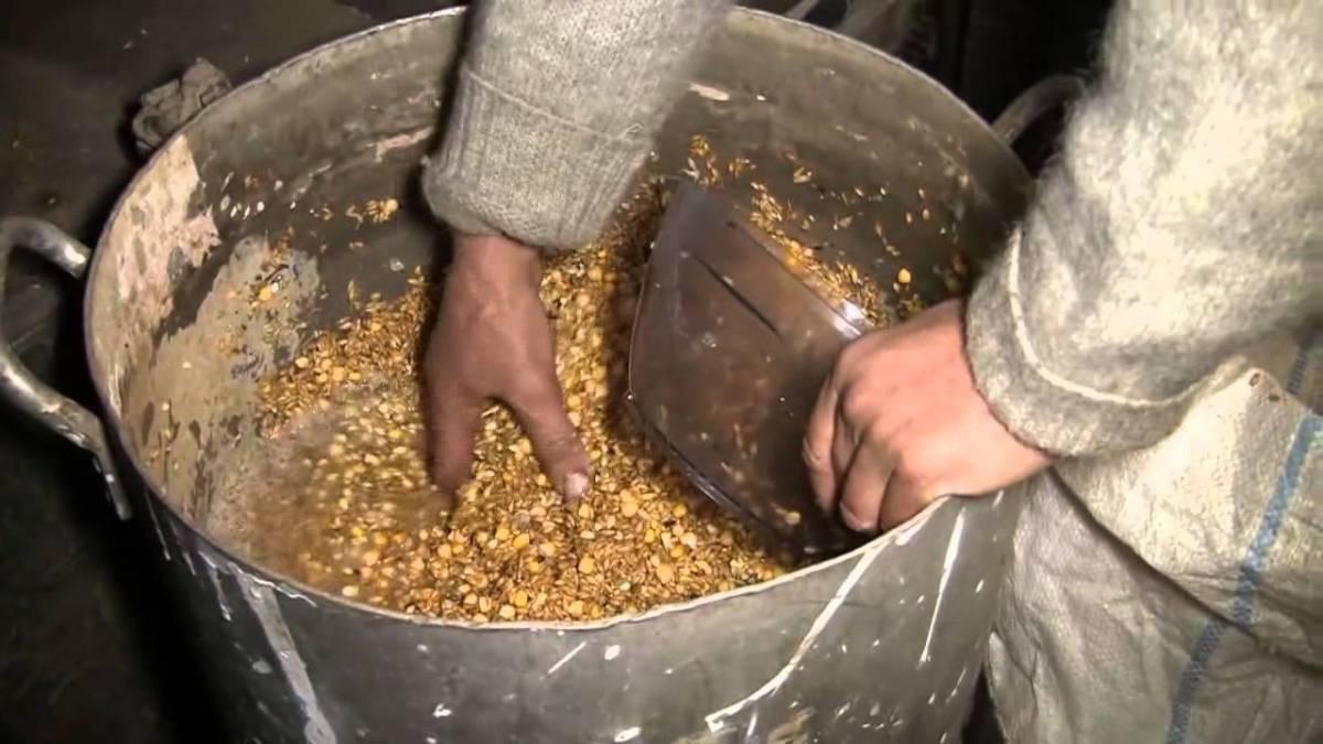Можно ли давать кроликам пшеницу, ячмень и кукурузу
