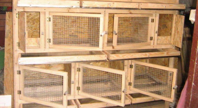 Клетки для кроликов своими руками трехъярусные