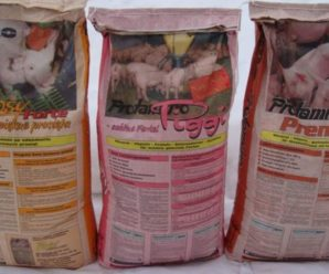 Премиксы для свиней – незаменимые добавки для здоровья и продуктивности