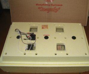 Простое решение для небольшого выводка: инкубатор «Золушка» на 70 яиц
