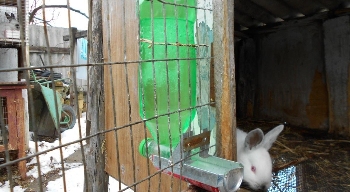 благодаря этому поилки для кроликов своими руками фото чертежи шатра