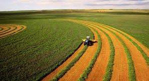 Важность аграрного портала