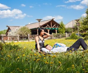 Сельский туризм: бизнес будущего