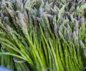 Спаржа: выращивание из семян в домашних условиях