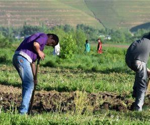 Займы для мигрантов во всех уголках России
