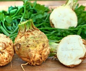 Сельдерей корневой: выращивание, особенности ухода